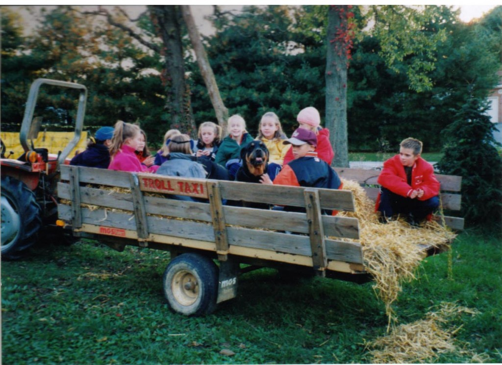 hayrides in the troll taxi
